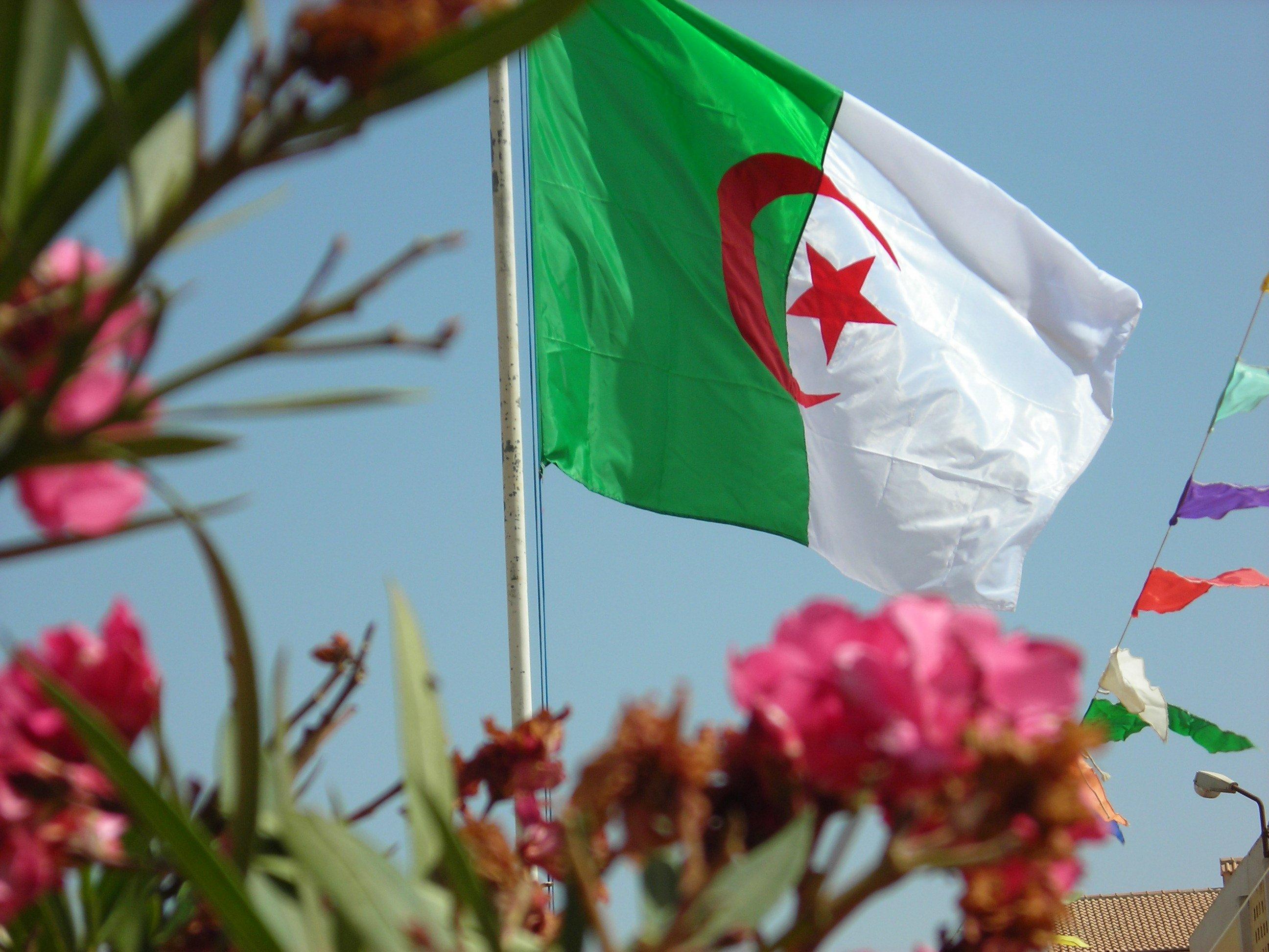 --مجموعة المخططين للثورة التحريرية الجزائرية-- dscn1916.jpg